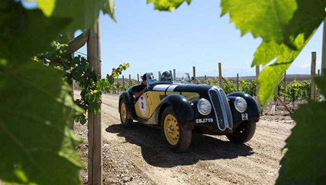 Por las rutas del buen vino